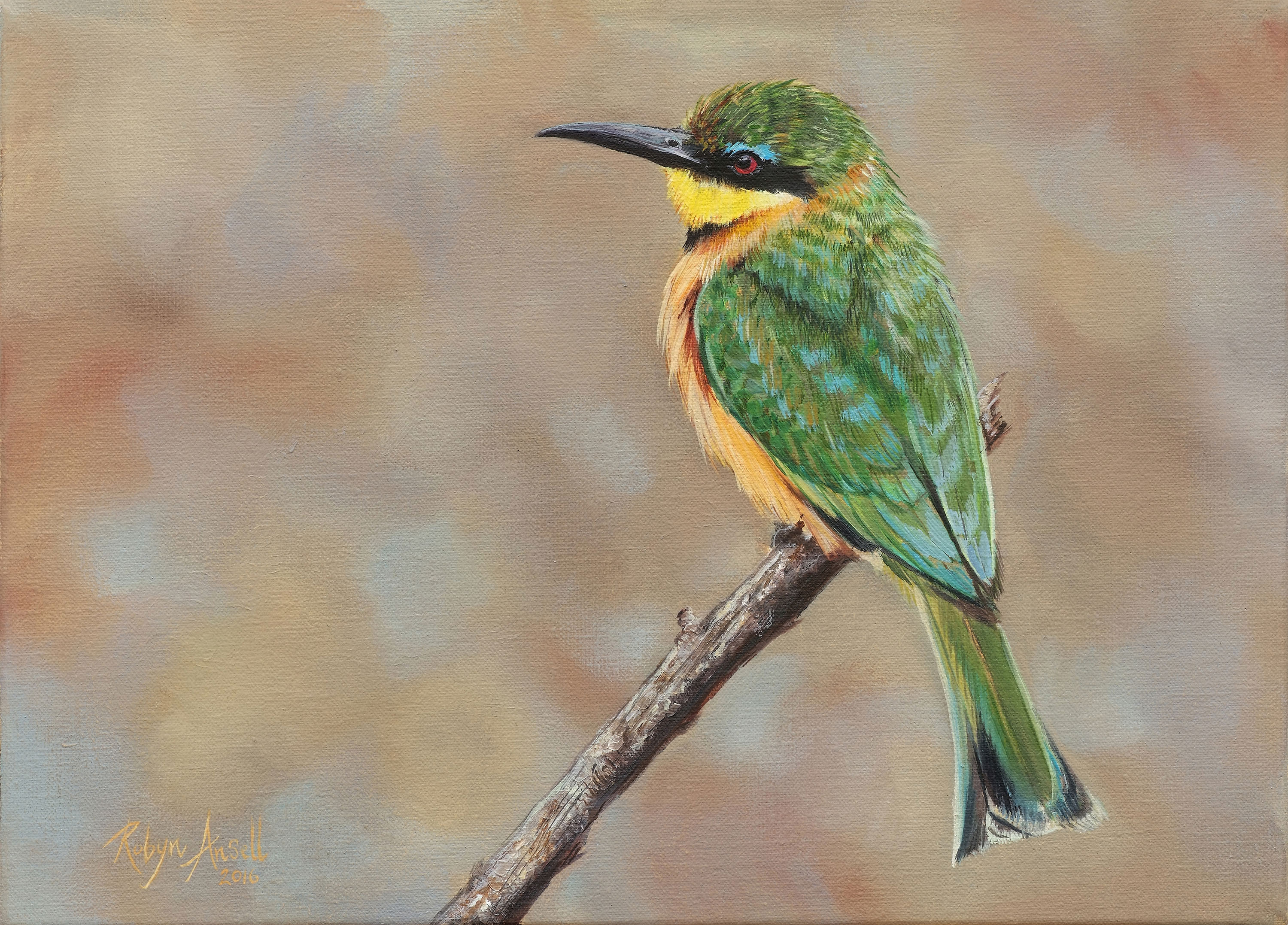 Little-bee-eater_A4-email-size