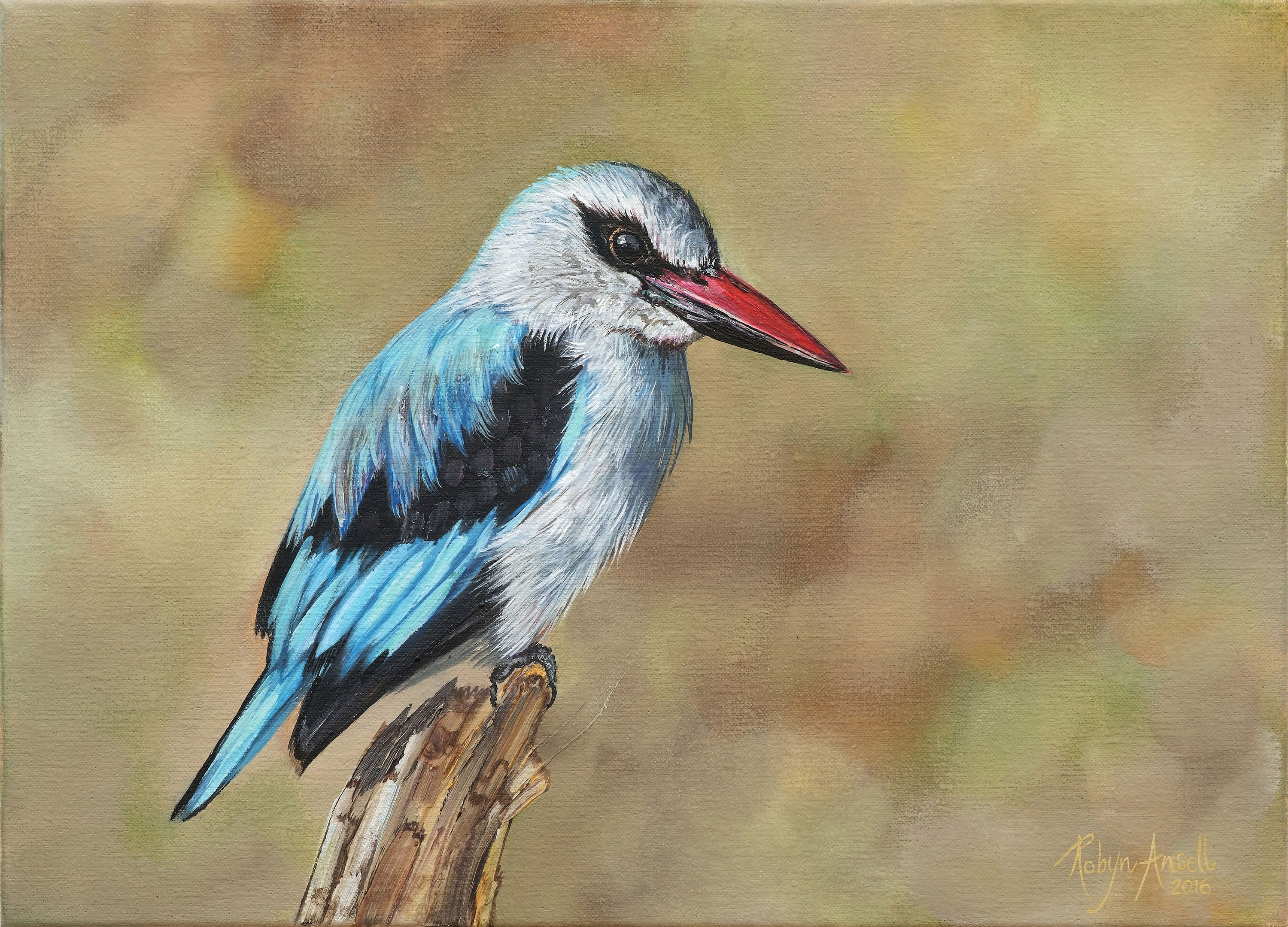 Woodland-kingfisher_A4-email-size