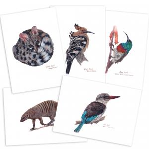 A4 Fine Art Prints